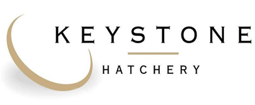 logo keystone hatchery day old chicks